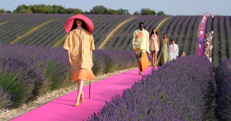 Desfile Jacquemus en campos de lavanda, imagen 2