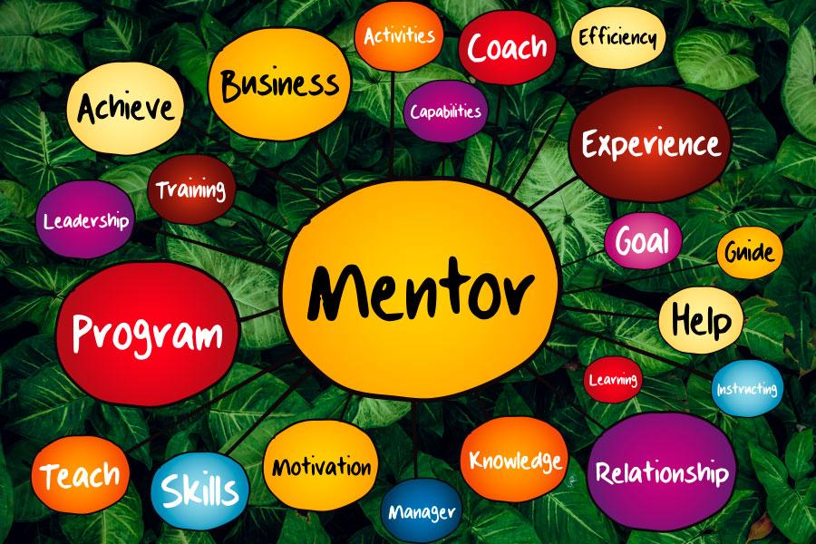 Cualidades del mentor reverse mentoring